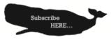 Subscribe-button-300x109