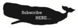 Subscribe-button-e1426651679201